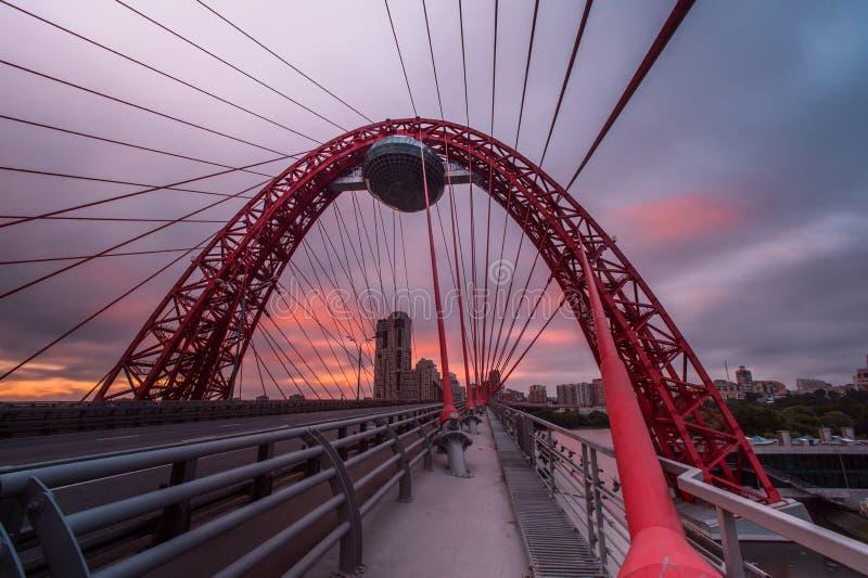 Кабел-остали мост стоковые изображения rf