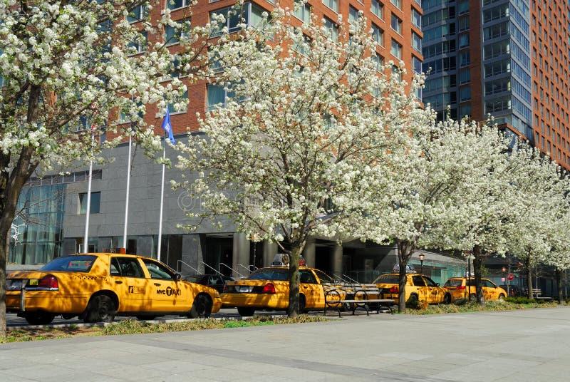 кабины новый желтый york стоковое изображение