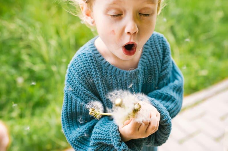 Кавказский ребенок дует на цветке одуванчика в парке стоковые фото
