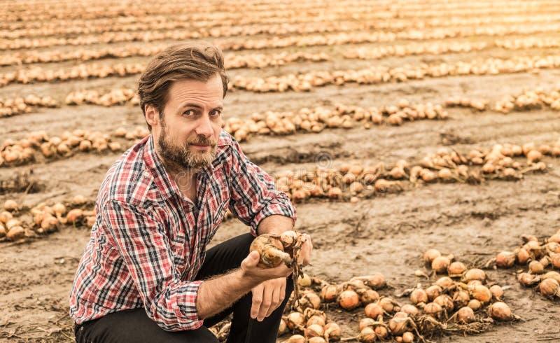 Кавказский фермер в поле лука управлением рубашки шотландки стоковые фото