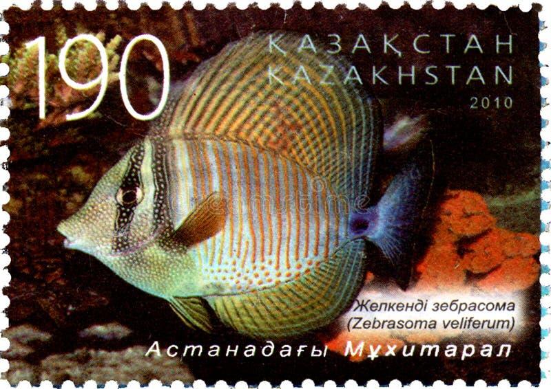 КАЗАХСТАН - ОКОЛО 2010: Штемпель почтового сбора напечатанный в Казахстане показывает veliferum Zebrasoma стоковое фото