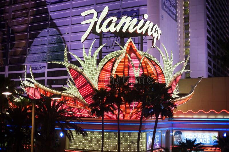 Казино Лас-Вегас фламинго стоковые фото