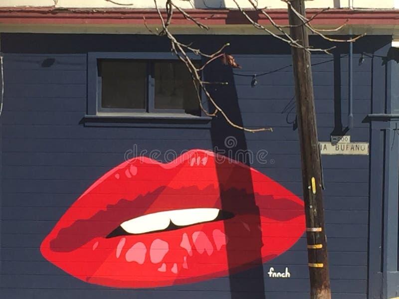 Какой поцелуй фантастичного и brigth в середине прогулки стоковые фото