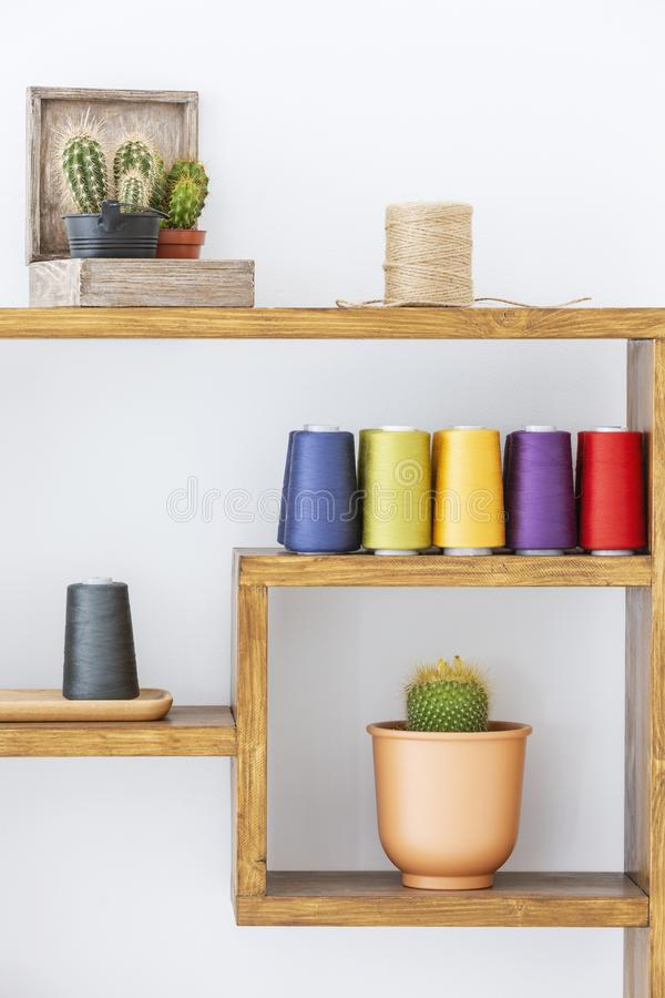 Кактусы и красочные пряжи на деревянных полках в интерьере живущей комнаты scandi современном Реальное фото стоковая фотография