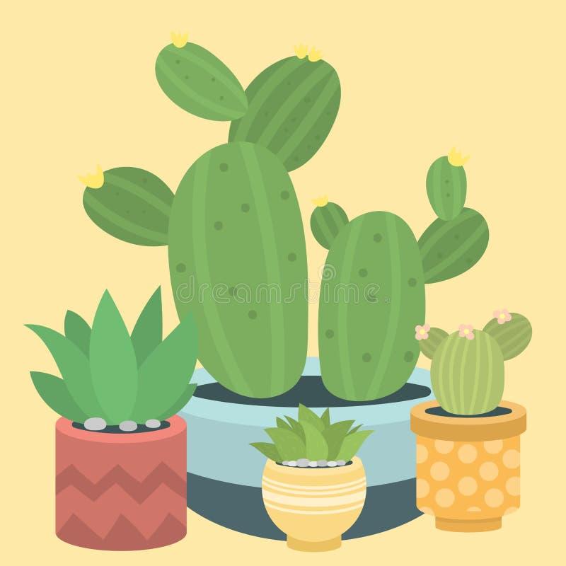 Кактусы природы зеленого растения кактуса cactaceous домашние vector иллюстрация дерева с цветком иллюстрация вектора