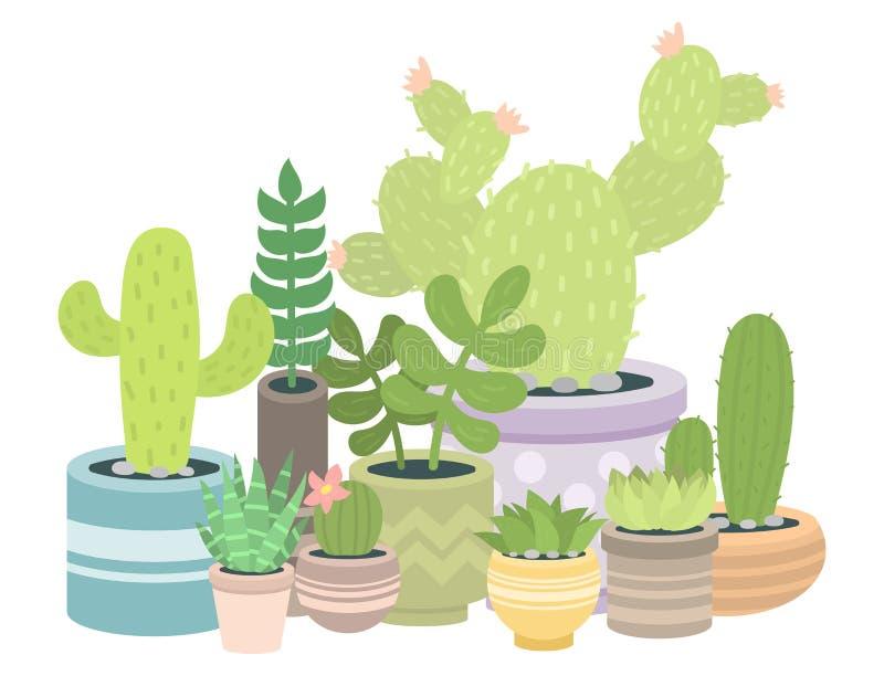 Кактусы природы зеленого растения кактуса cactaceous домашние vector иллюстрация дерева с цветком иллюстрация штока