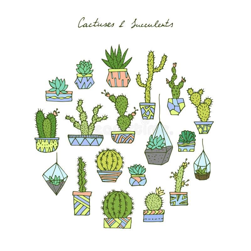 Кактусы, установленные succulents бесплатная иллюстрация