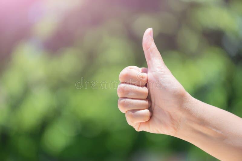 Как оно большие пальцы руки вверх над естественной зеленой предпосылкой нерезкости лист стоковое фото
