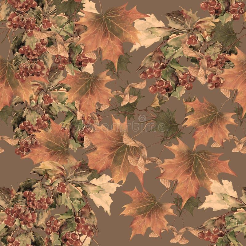 Калина ягоды акварели и клен листьев на коричневой предпосылке E иллюстрация вектора
