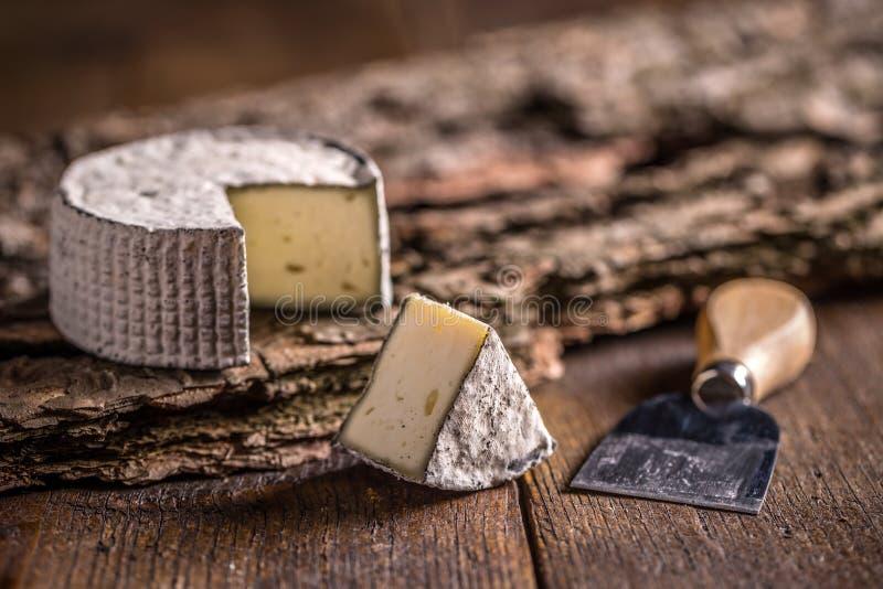 Камамбер, мягкий сыр стоковое фото rf