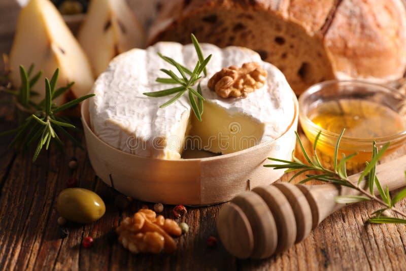 Камамбер с грецким орехом стоковое фото rf