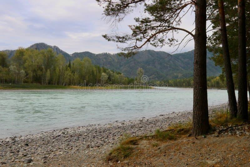 Каменистый банк реки стоковое изображение