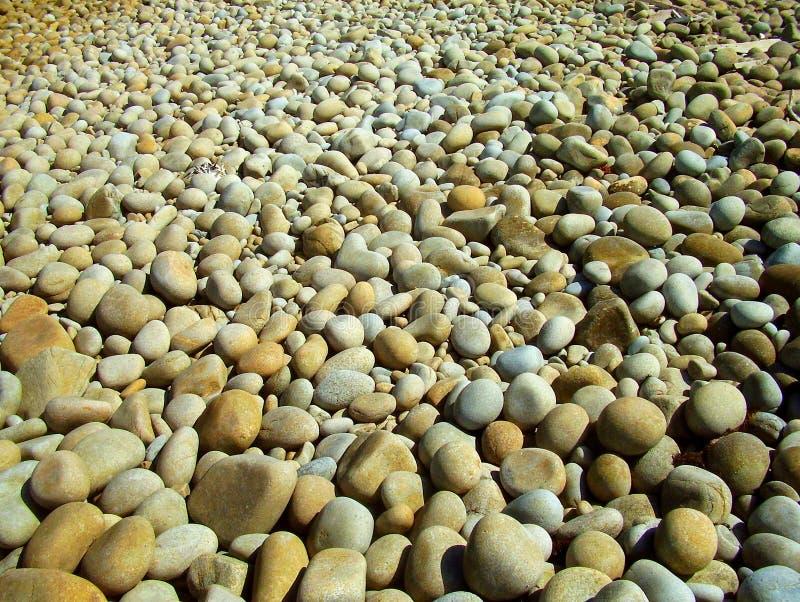 Каменистый пляж круглых утесов стоковое фото rf