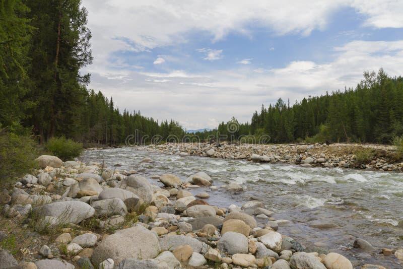Каменистый речной берег стоковые фото