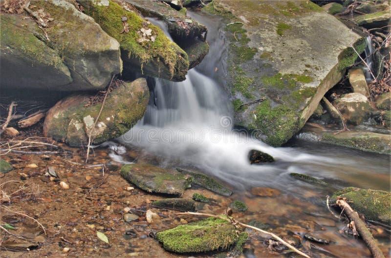 Каменная гора каскадирует на заводи ` s вдовы стоковое изображение rf