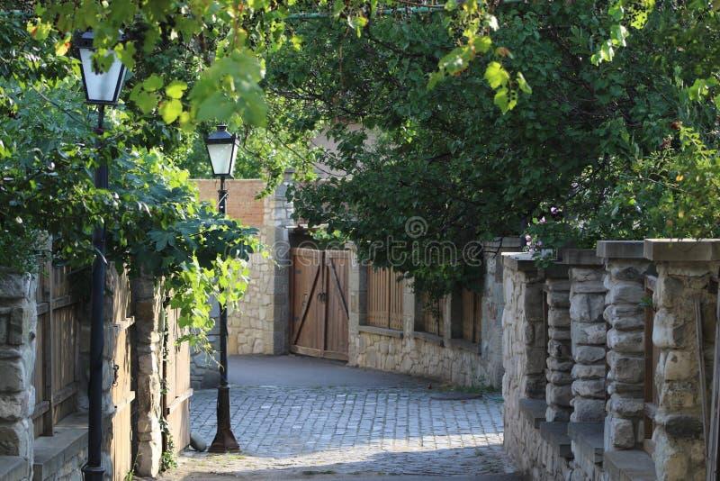 Каменная дорога, каменные стены, деревянная дверь, штендер фонарика и деревья стоковая фотография rf