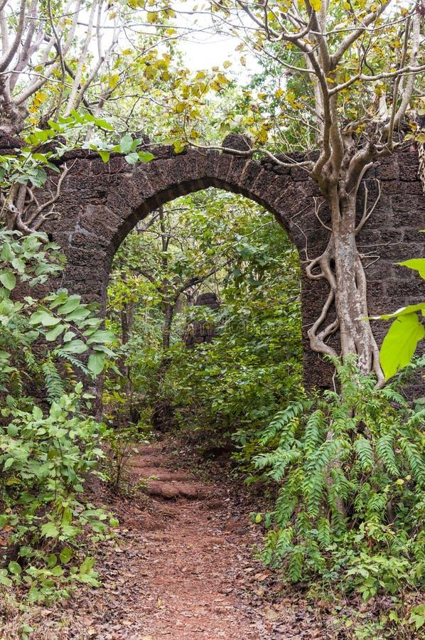Каменная дуга перерастанная с заводами джунглей стоковая фотография