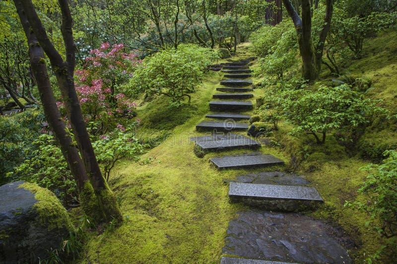 Каменная лестница в саде стоковое изображение