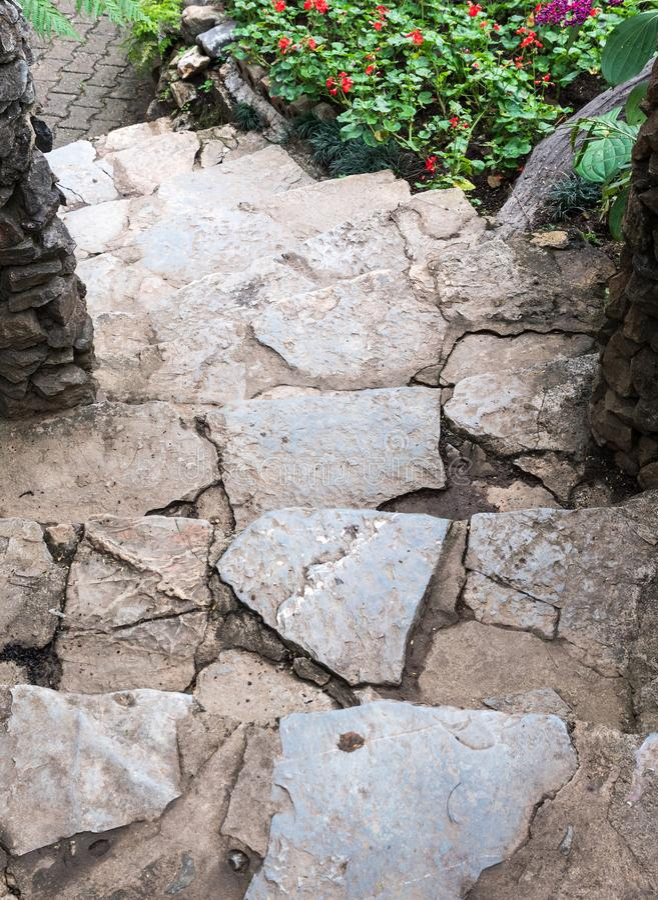 Каменная лестница к строке цветка стоковое фото
