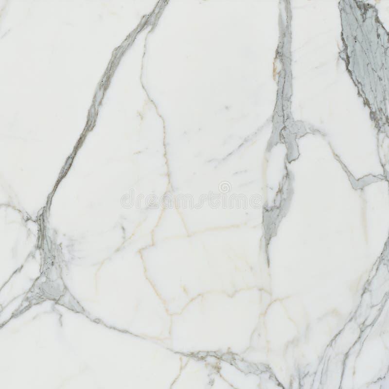 Каменная мраморная предпосылка Carraras стоковые изображения