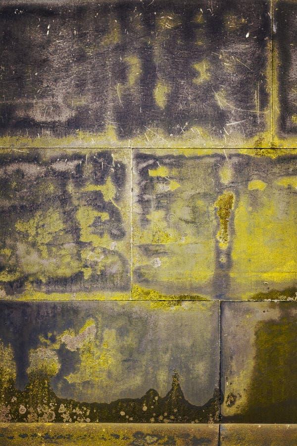 Каменная стена с прессформой стоковые фото