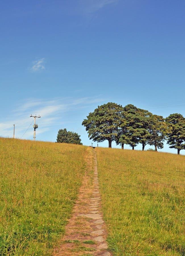 Каменная тропа водя к верхней части холма в луге лета с линией зеленых деревьев и ярком солнечном небе с направлением s стоковое изображение rf