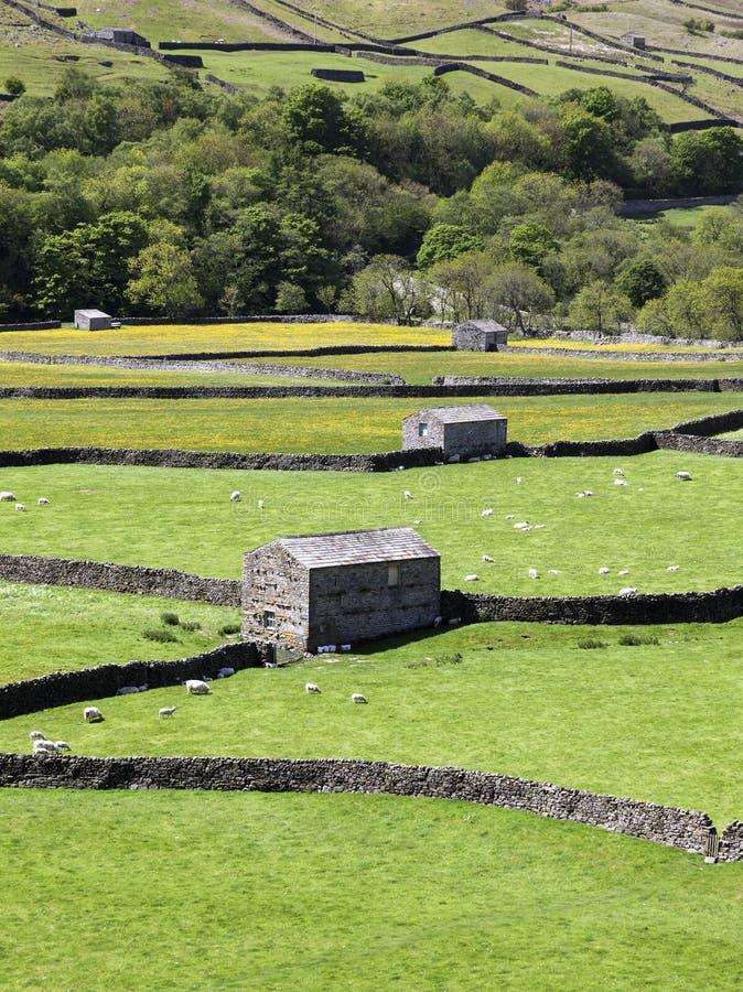 Каменные амбары, Gunnerside стоковые фото