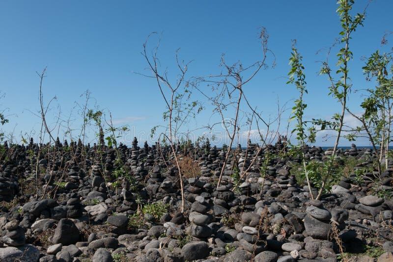 Каменные пирамиды, штабелированные камни на пляже с предпосылкой океана стоковые фото