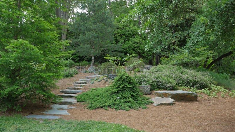 Каменные шаги и в сад стоковая фотография rf