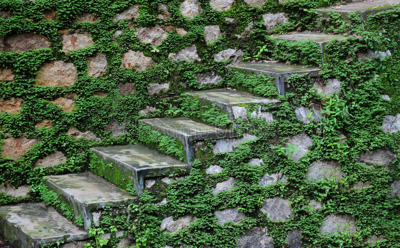 Каменные шаги после муссона стоковые изображения