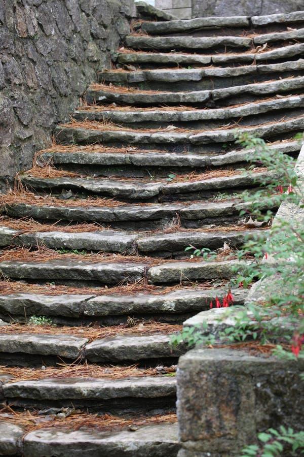 Каменные шаги стоковые изображения rf