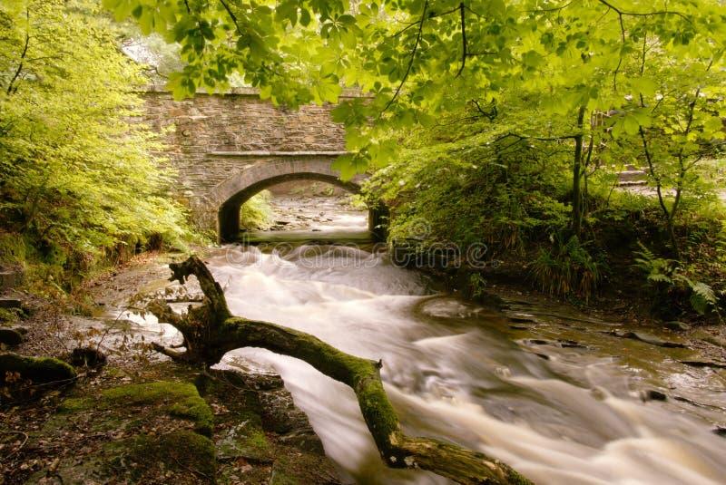 Каменный мост над рекой Roddlesworth стоковое фото rf
