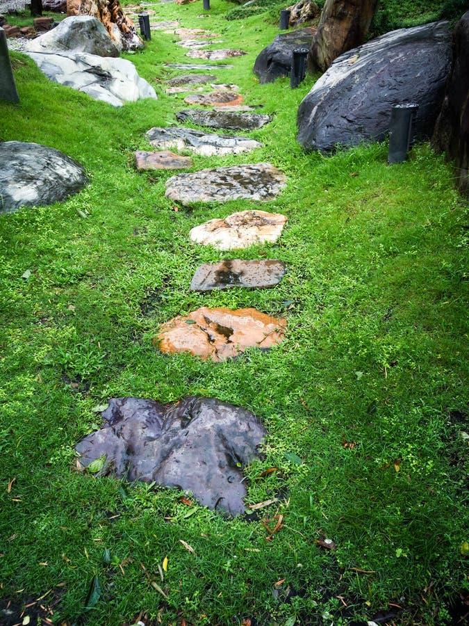 Каменный путь на зеленой траве стоковая фотография rf