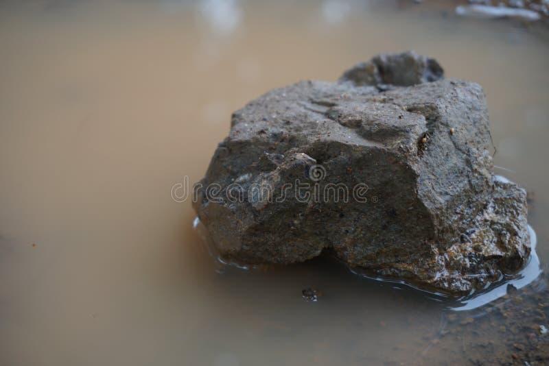 Камень в тазе сиротливом стоковые фотографии rf