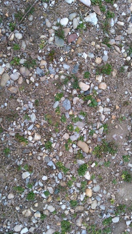 Камень в траве стоковая фотография