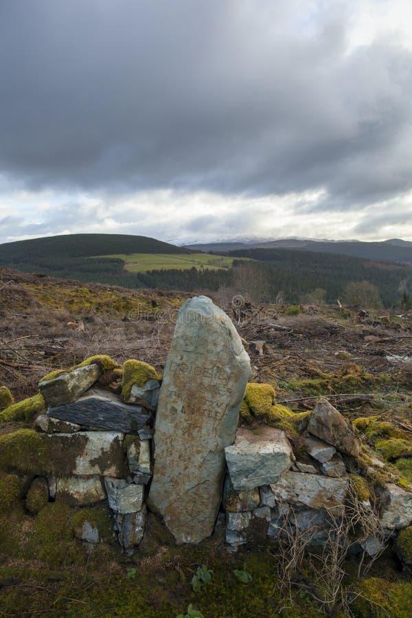Камень мили леса coed y Brenin стоковая фотография rf