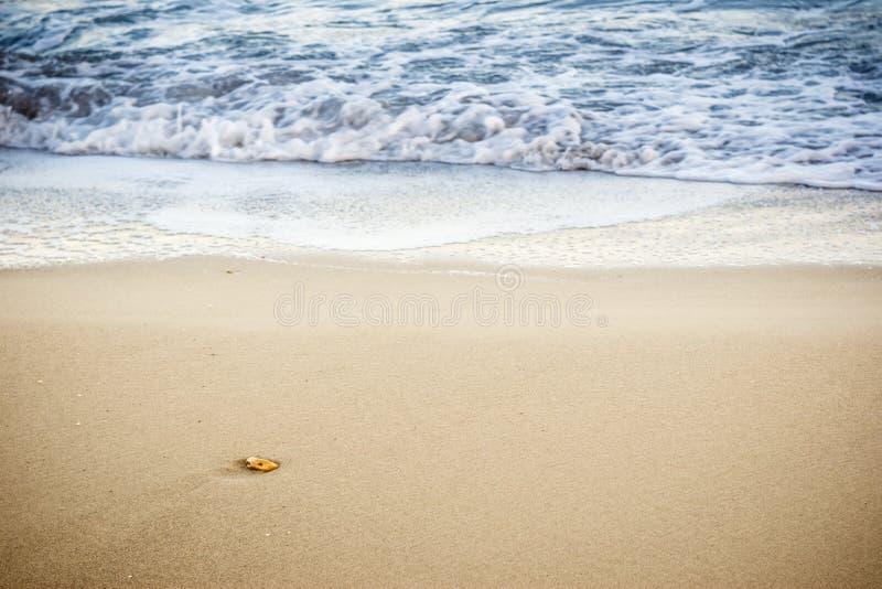 Камень моря стоковая фотография