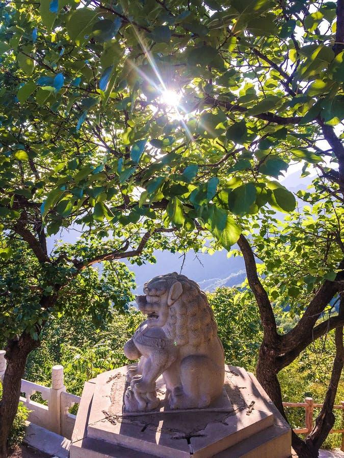 камень сброса nanjing льва фарфора стоковые изображения rf