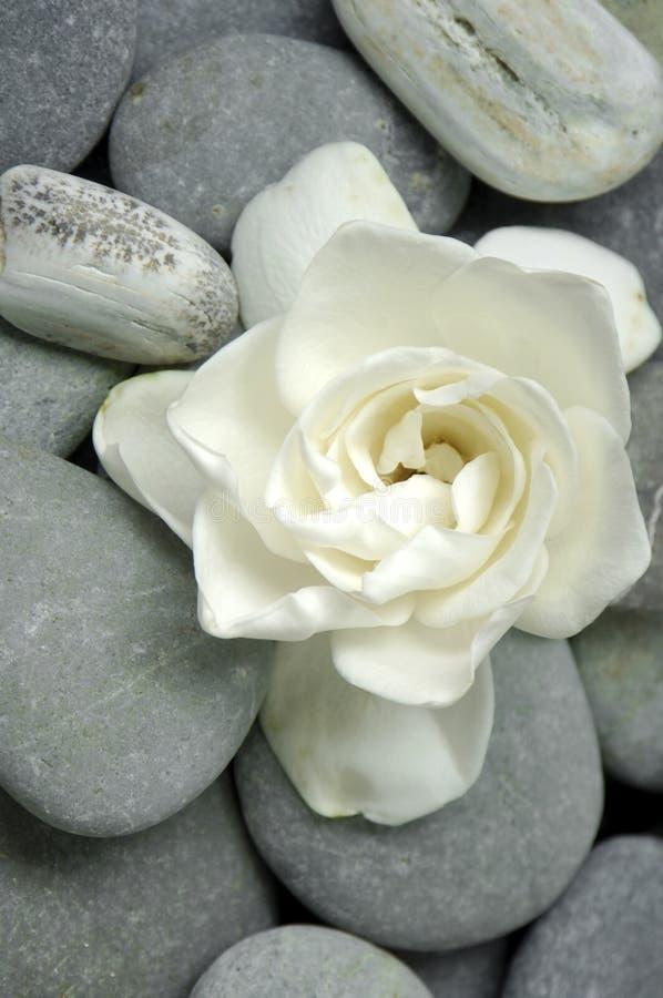 камень спы стоковое фото rf