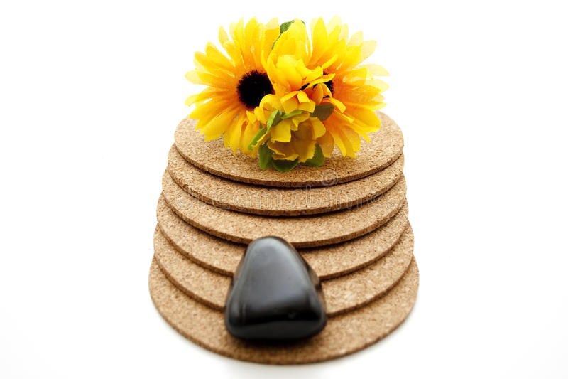 Камень с солнцецветом стоковые фотографии rf