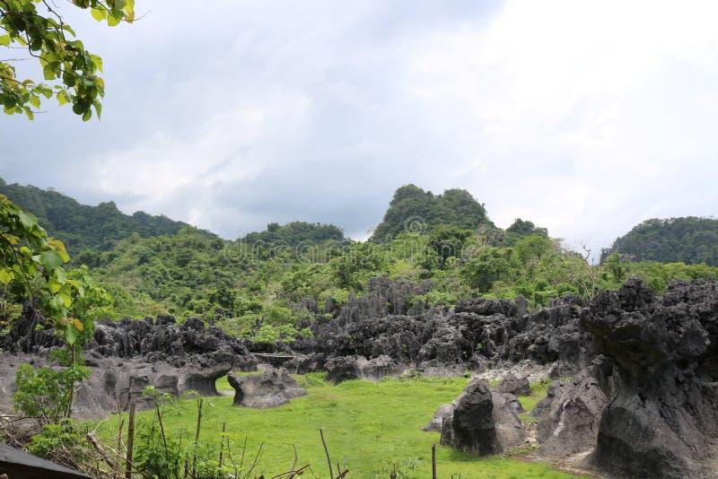 Камень Karst стоковые изображения
