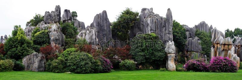 камень shilin парка пущи стоковые изображения rf