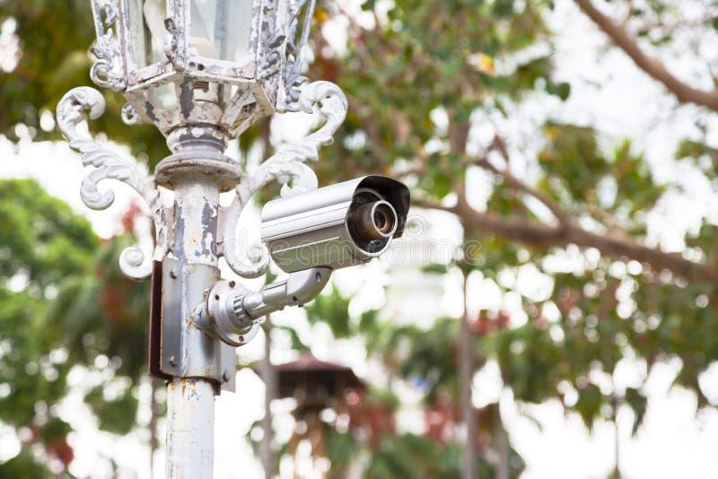 Камеры CCTV на поляках стоковая фотография