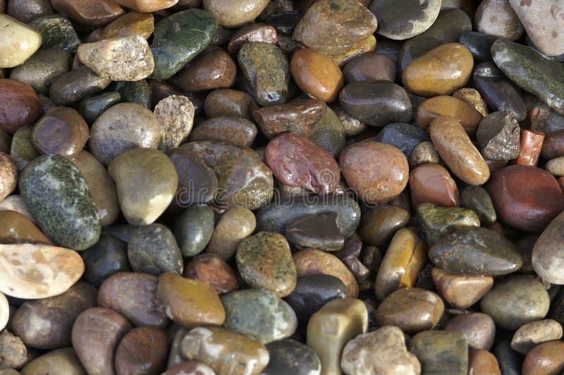 камни влажные стоковое изображение