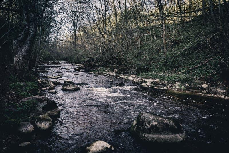Камни в реке Dukstos горы Литва, парк Neris региональный стоковое изображение rf