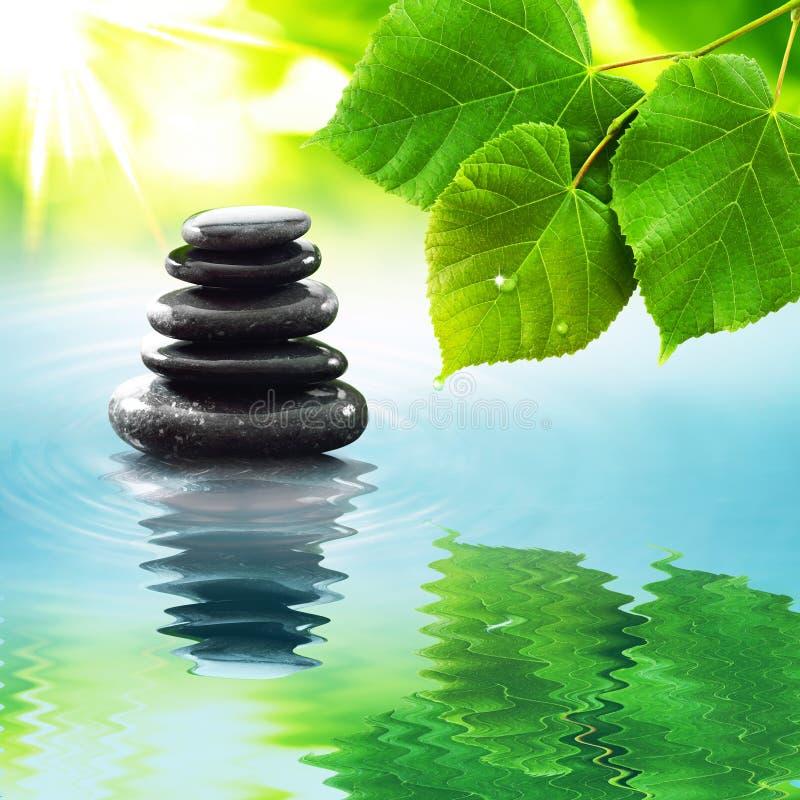 Камни Дзэн & листья зеленого цвета стоковая фотография rf