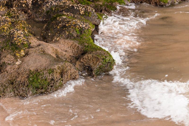 Камни на краю пляжа стоковое изображение rf