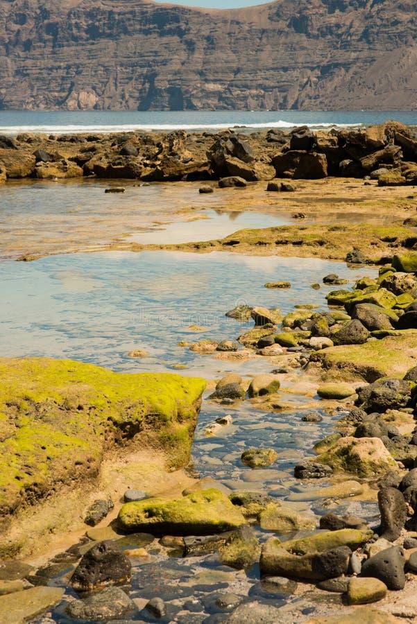 Камни на пляже стоковое фото