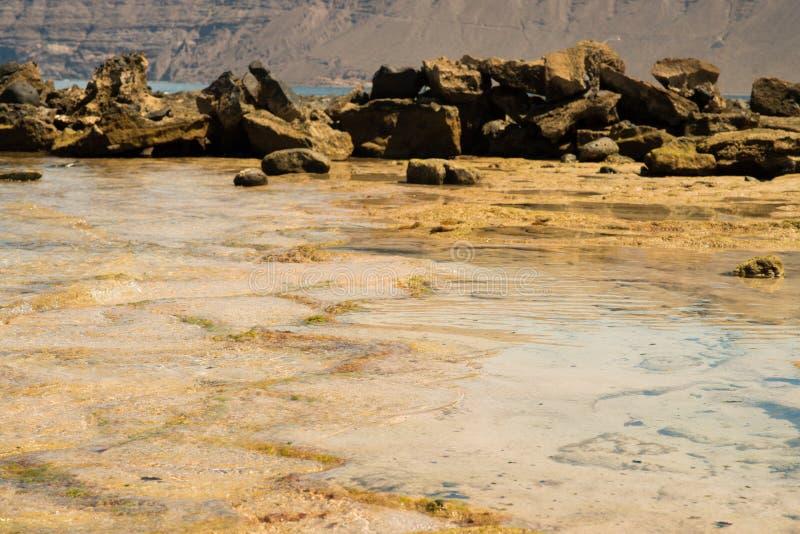 Камни на пляже стоковые фотографии rf