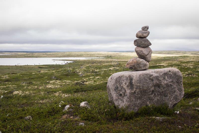 Камни на траве стоковые фото